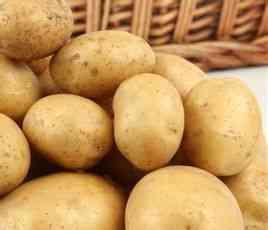 定西马铃薯